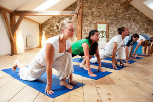 Hatha-Yoga-Teacher-Training-Course