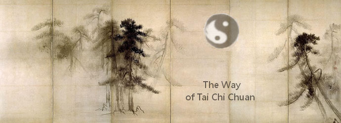 The-Way-Of-Tai-Chi-Chuan-Alpen-Retreat-Austria